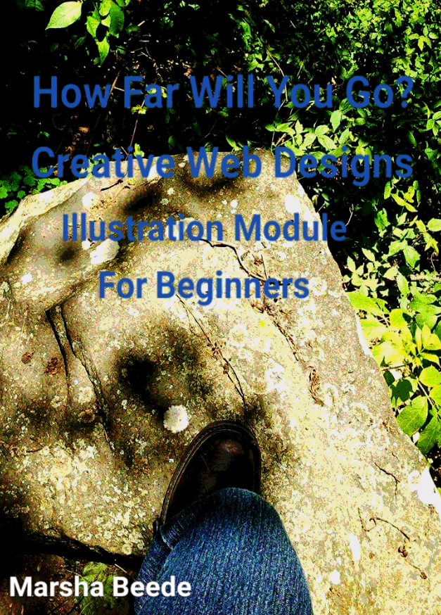 Web Design, Index Style, Self Guided Module For Beginners Now Available On Ebay